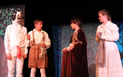 """Into the Woods"" Shines on Stage"
