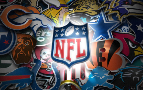 2017 NFL Season Preview