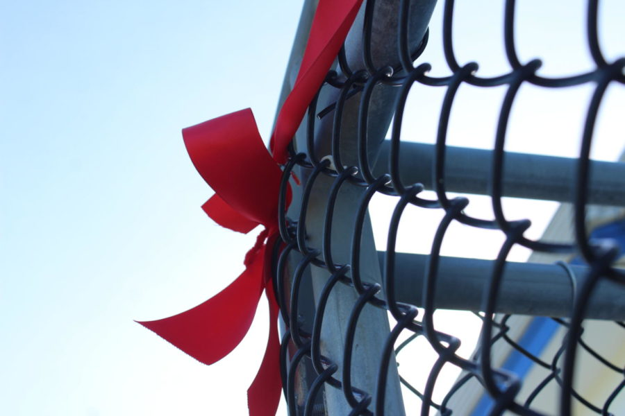 TBS put red ribbons all throughout campus to commemorate Red Ribbon Week.