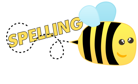 The class spelling bees have concluded, but who will emerge as the middle school champion?